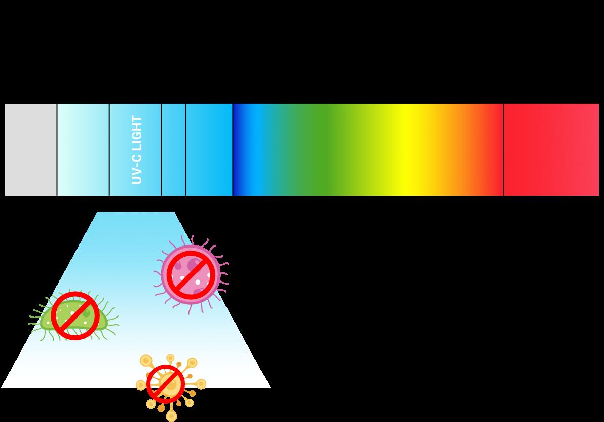 Uvb Säteily